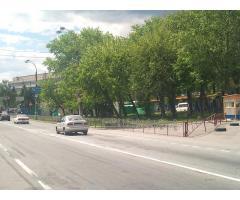 Продам участок в Киеве на Оболони со своими соснами!