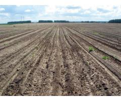 до 100 Га земли под сельское хозяйство у реки!